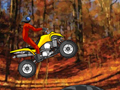 Quad Extreme Racer to play online
